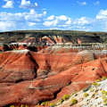 Painted Desert by Barry Shaffer