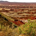 Painted Desert Panorama by Marilyn Smith