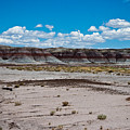 Painted Desert by Robert J Caputo