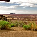 Painted Desert Vista by Marilyn Smith