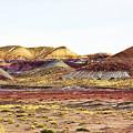 Painted Desert Winter 0602 by Sharon Broucek