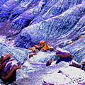 Painted Desert With Petrified Wood - Arizona by Merton Allen