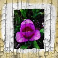Painted Flower With Peeling Effect by Barbara Griffin