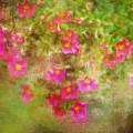 Painted Flowers by Christina VanGinkel