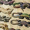 Painted Geckos by Michele Burgess