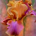 Painted Goddess - Iris by Carol Cavalaris