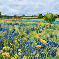 Painted Hills by Hailey E Herrera