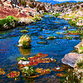 Painted Hot Creek Springs by Stephen Whalen