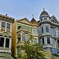 Painted Ladies -2 by Tommy Anderson