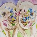 Painted Ladies by Carol Blackhurst