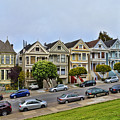 Painted Ladies by Tommy Anderson