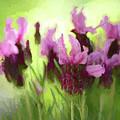 Painted Lavender By Kaye Menner by Kaye Menner