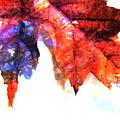 Painted Leaf Series 4 by Anita Burgermeister