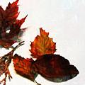 Painted Leaf Series 5 by Anita Burgermeister
