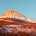 Painted Mountain Orange by Todd Klassy