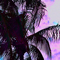 Painted Palms 4 by Maria Keady