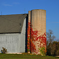 Painted Silo by Tim Nyberg