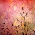 Painted Skies 2 by Tara Turner