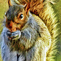 Painted Squirrel  by Geraldine Scull