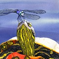 Painted Turtle And Dragonfly by Catherine G McElroy