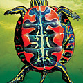 Painted Turtle Green by JQ Licensing