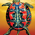 Painted Turtle Sunset Orange by JQ Licensing