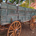 Painted Wagon by Ann Davis
