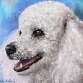 Painting Of A White Fluffy Poodle Smiling by Idan Badishi