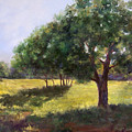 Painting Of Sunlit Meadow by Cheri Wollenberg