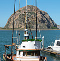 Painting The Trudy S Morro Bay by Barbara Snyder