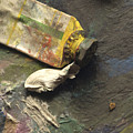 Painting Tub by Bernard Jaubert