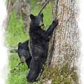 Paintography - Bear Standing Up Beside Tree by Dan Friend
