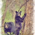 Paintography - Mom And Spring Cub In The Woods by Dan Friend