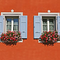 Pair Of Blue Shutters by Tom Reynen