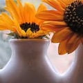 Pair Of Sunflowers by Karen Molenaar Terrell