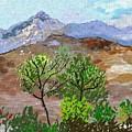 Paisaje- Chile-cerro Campana by Carlos Camus
