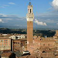 Palazzo Pubblico And Campo Siena by Mathew Lodge