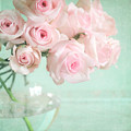 Pale Pink Roses by Lyn Randle