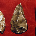 Paleolithic Tools by Granger