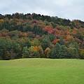 Autumn Palette by Carolyn Mickulas
