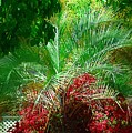 Palm And Azaleas by Donna Bentley