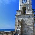 Palm Beach Clock Tower  by Carol Montoya