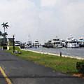 Palm Beach Marina by Thomas Tribby