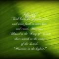 Palm Branch by Anita Faye