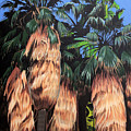 Palm Canyon Entrance by Joe Roselle