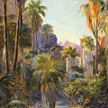 Palm Canyon by Lewis A Ramsey