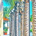 Palm Columns by Gwyn Newcombe