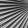 Palm Fan Pattern by Ron Dahlquist - Printscapes