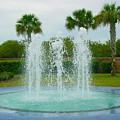 Palm Fountain by Pat Turner
