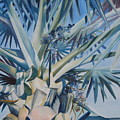 Palm by Katherine  Fyall